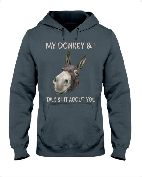My donkey and i talk shit about you hoodie