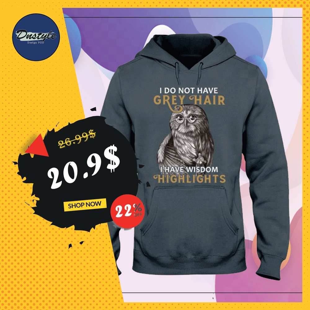 Owl i do not have grey hair i have wisdom highlights hoodie