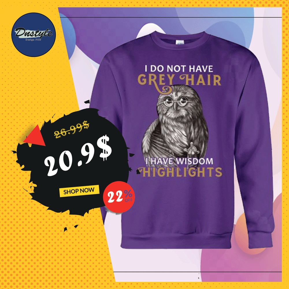 Owl i do not have grey hair i have wisdom highlights sweater