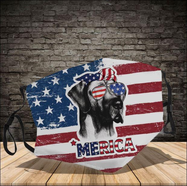 Great Dane America face mask