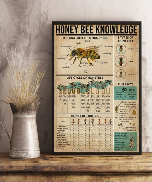 Honey Bee knowledge poster 1