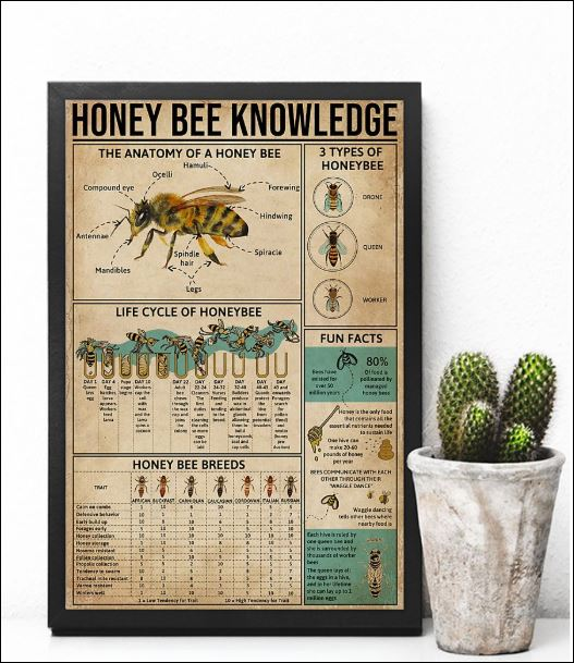 Honey Bee knowledge poster 2