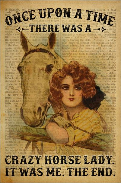 Once upon a time there was a crazy horse lady it was me the end poster
