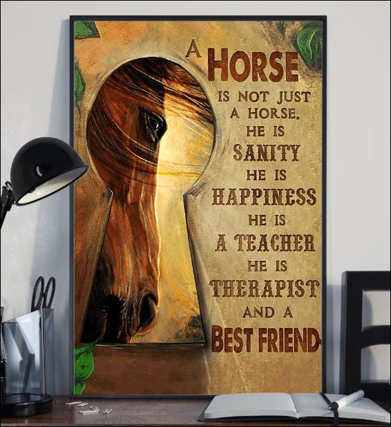 A horse is not just a horse he is therapist and a best friend poster 1
