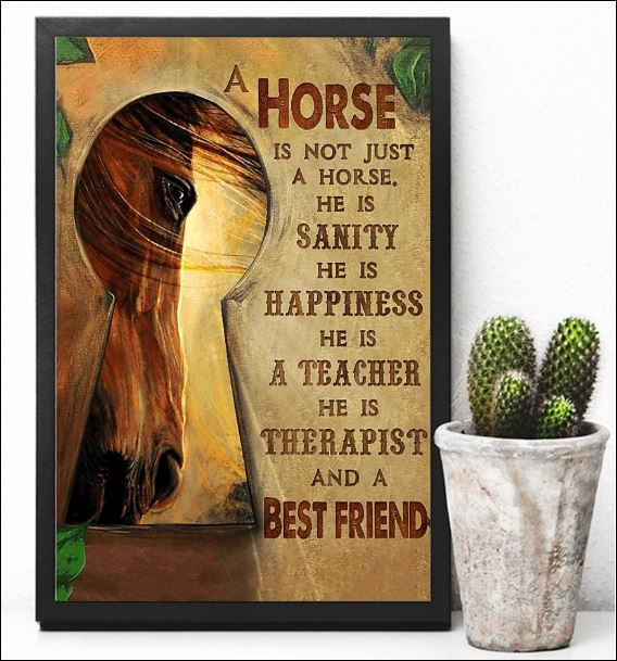 A horse is not just a horse he is therapist and a best friend poster 3