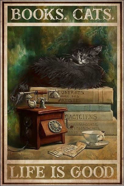 [Cheapest] Books cats life is good poster