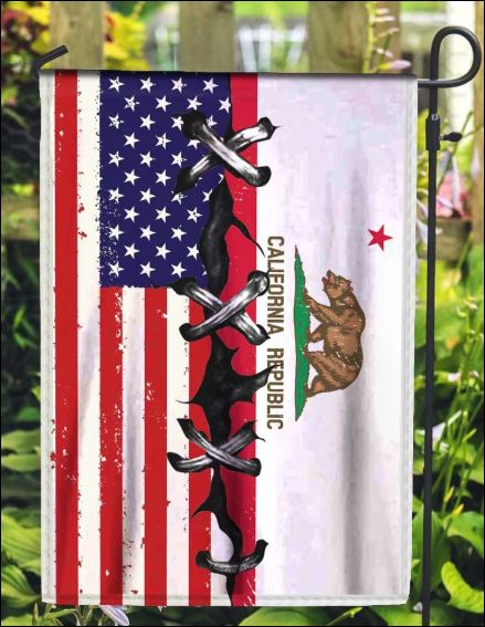 California and American flag