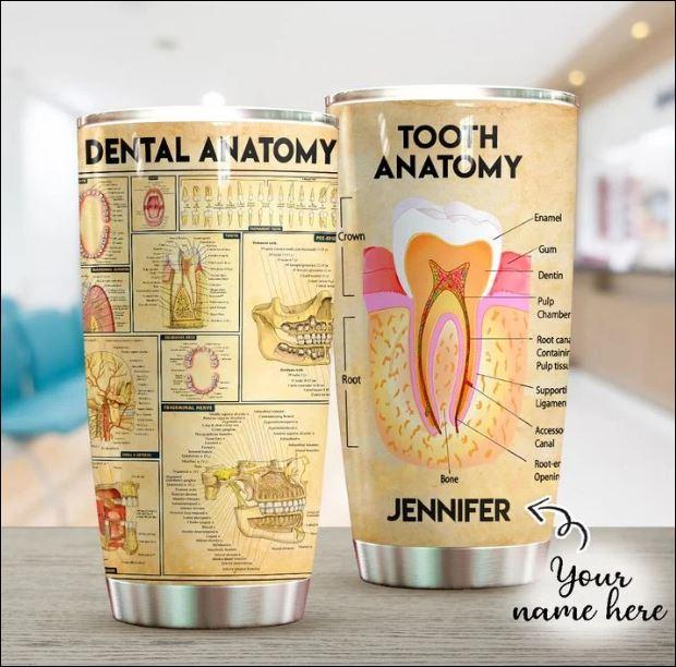 Dental anatomy tumbler