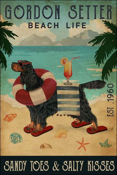 Gordon Setter beach life sandy toes and salty kisses poster