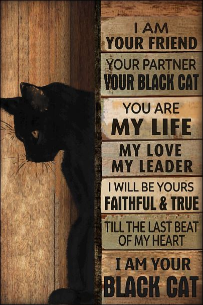 I am your friend i am your black cat poster
