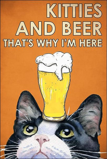 Kitties and beer that's why i'm here poster