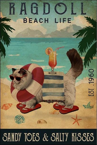 Ragdoll beach life sandy toes and salty kisses poster