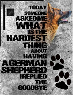 Today someone asked me what is the hardest thing about having a German Shepherd i replied the goodbye poster