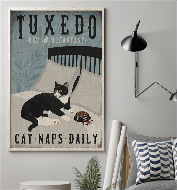 Tuxedo bed and breakfast cat naps daily poster 1