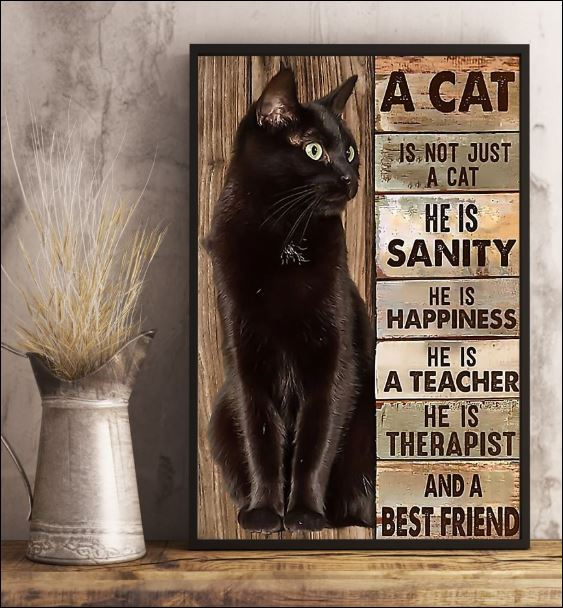 A cat is not just a cat he is sanity he is happiness he is a teacher he is therapist poster 1