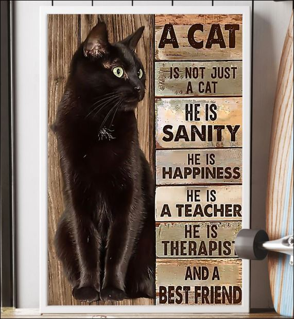 A cat is not just a cat he is sanity he is happiness he is a teacher he is therapist poster 2