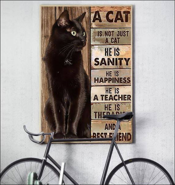 A cat is not just a cat he is sanity he is happiness he is a teacher he is therapist poster 3