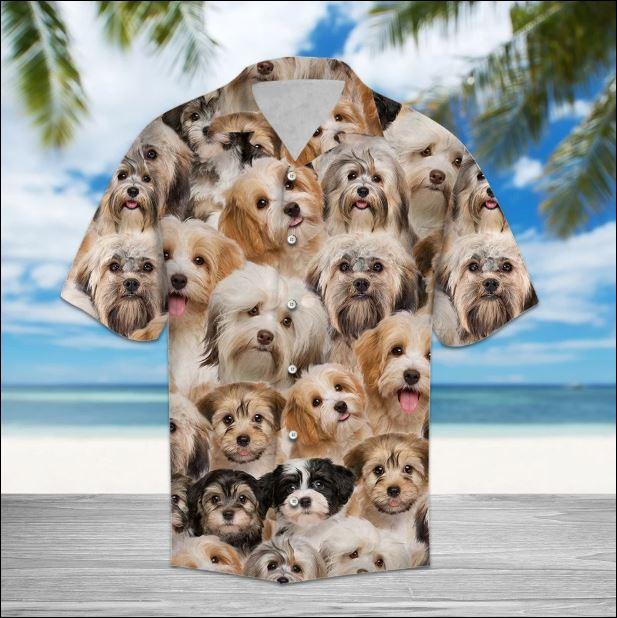 Havanese hawaiian shirt
