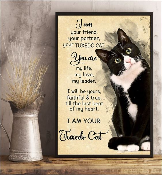 I am your friend your partner your tuxedo cat poster 3