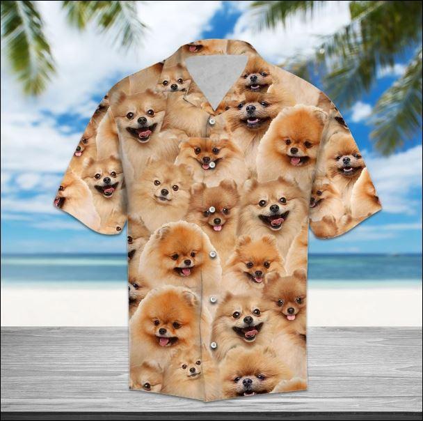 Pomeranian hawaiian shirt