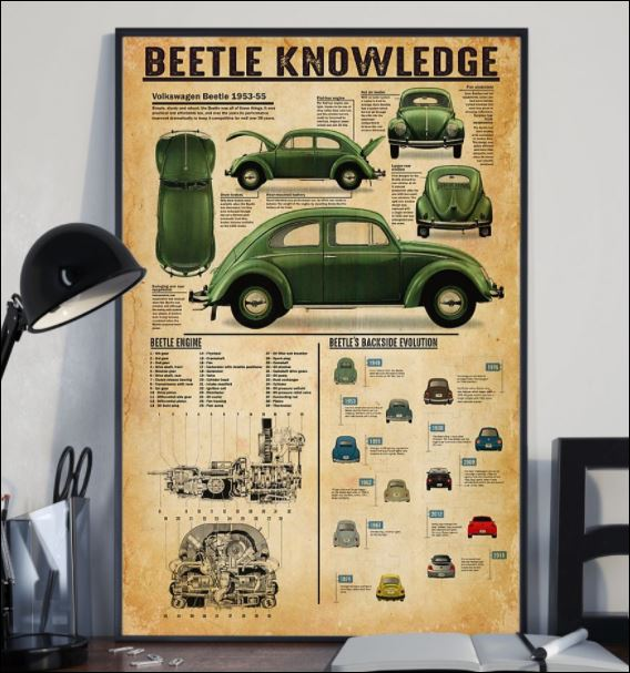 Beetle knowledge poster 2