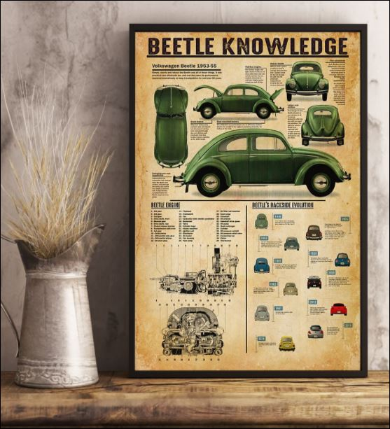 Beetle knowledge poster 3