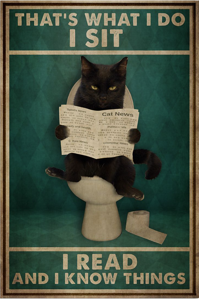 Black cat that's what i do i sit i read and i know things poster