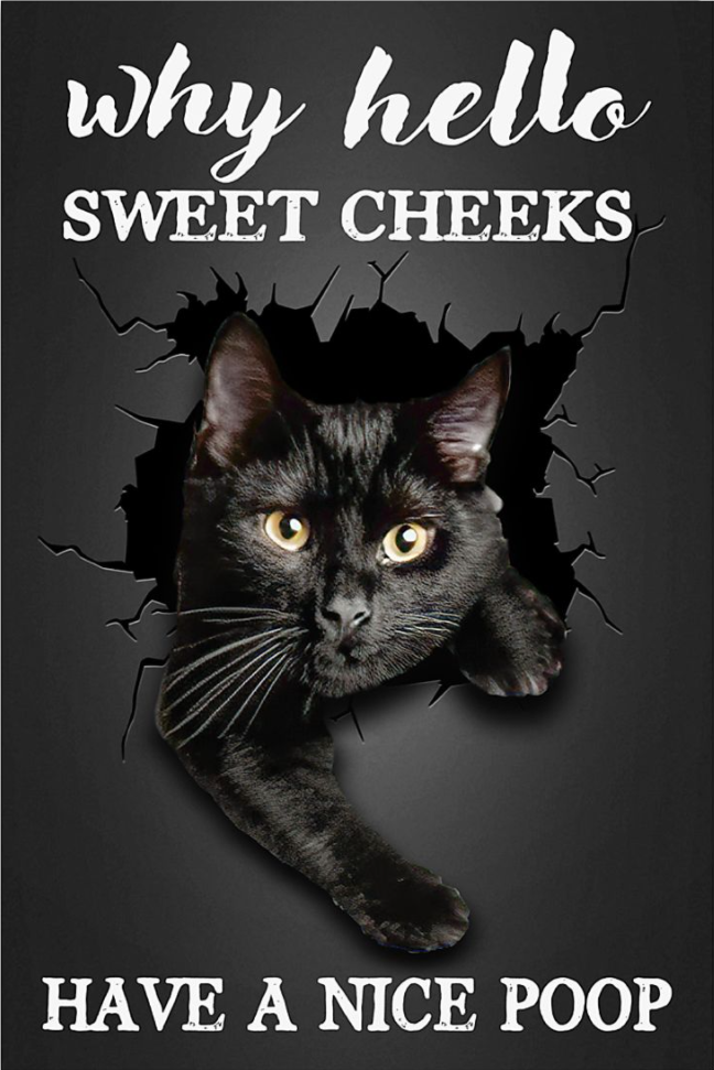 Black cat why hello sweet cheeks have a nice poop poster