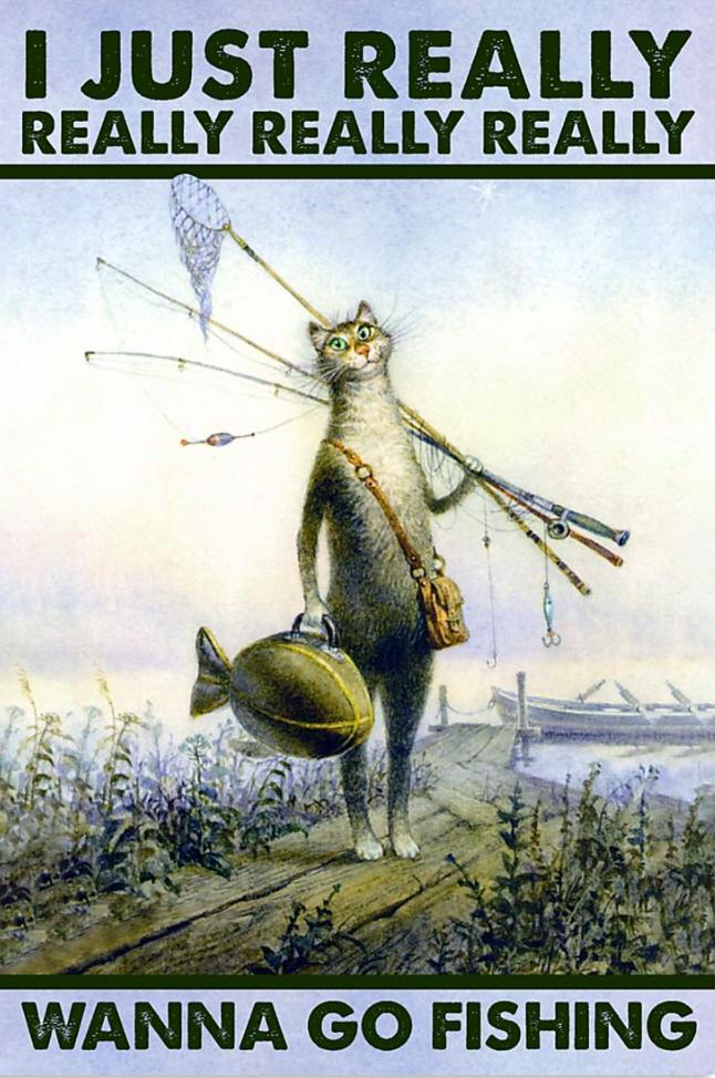 Cat i just really really really really wanna go fishing poster