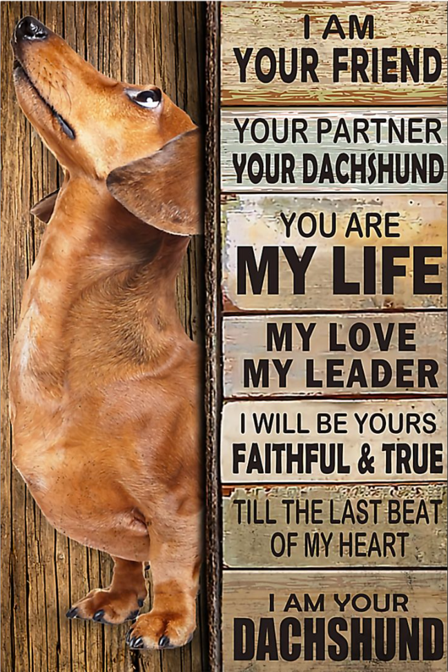 I am your friend i am your Dachshund poster