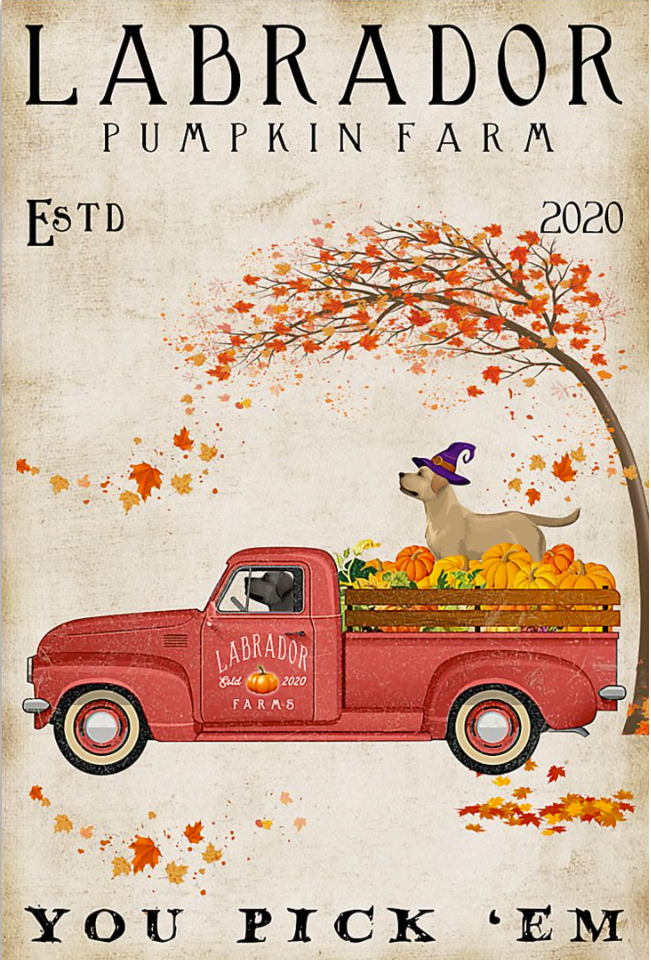 Labrador pumpkin farm you pick 'em poster