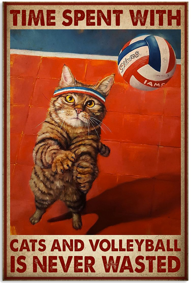 Time spent with cats and volleyball is never wasted poster