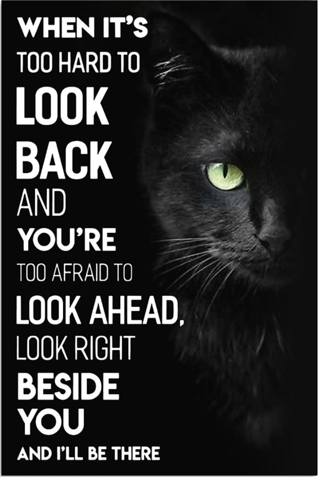 Black cat when it's too hard to look back and you're too afraid to look ahead look right beside you and i'll be there poster