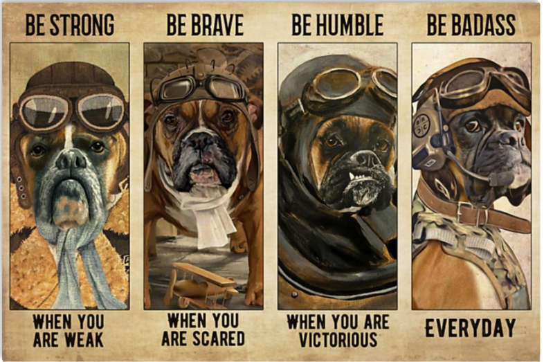 Boxer pilot be strong when you are weak be brave when you are scared poster