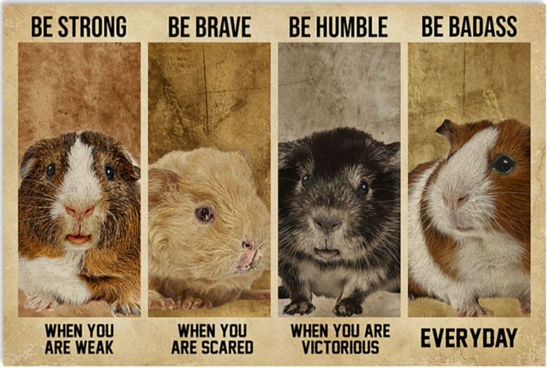 Guinea Pig be strong when you are weak be brave when you are scared poster