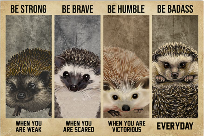 Hedgehog be strong when you are weak be brave when you are scared poster