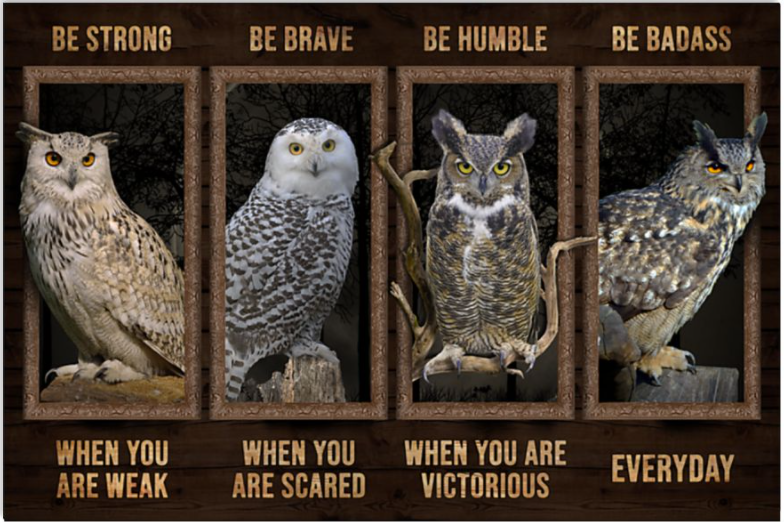 Owls be strong when you are weak be brave when you are scared poster