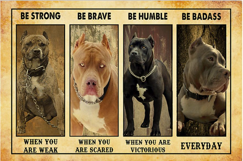 Pitbull be strong when you are weak be brave when you are scared poster