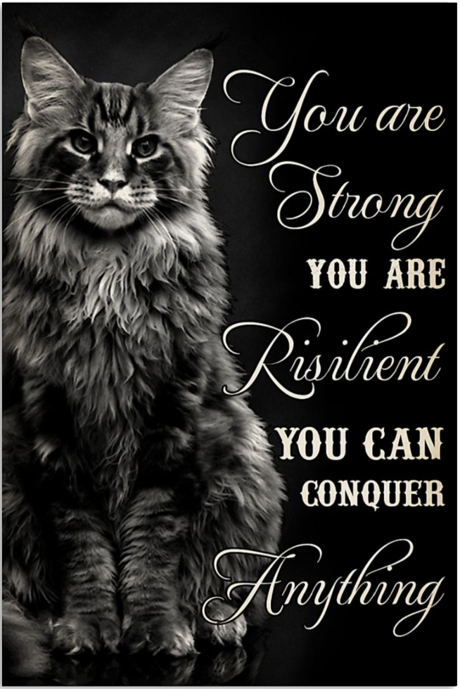 Cat you are strong you are resilient you can conquer anything poster