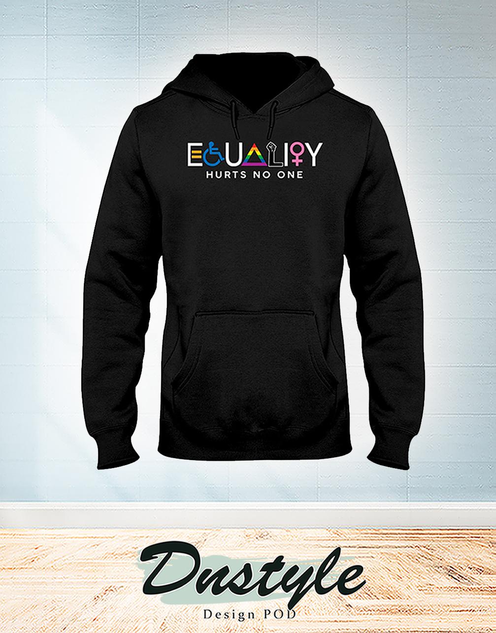 Equality hurts no one hoodie