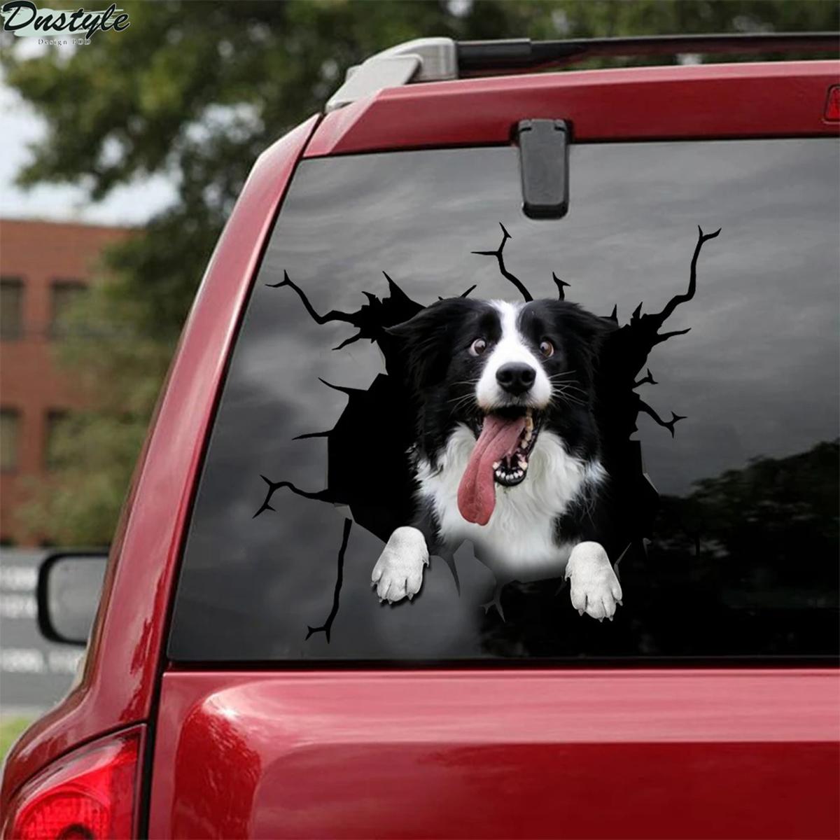 Border collie crack car decal sticker 1