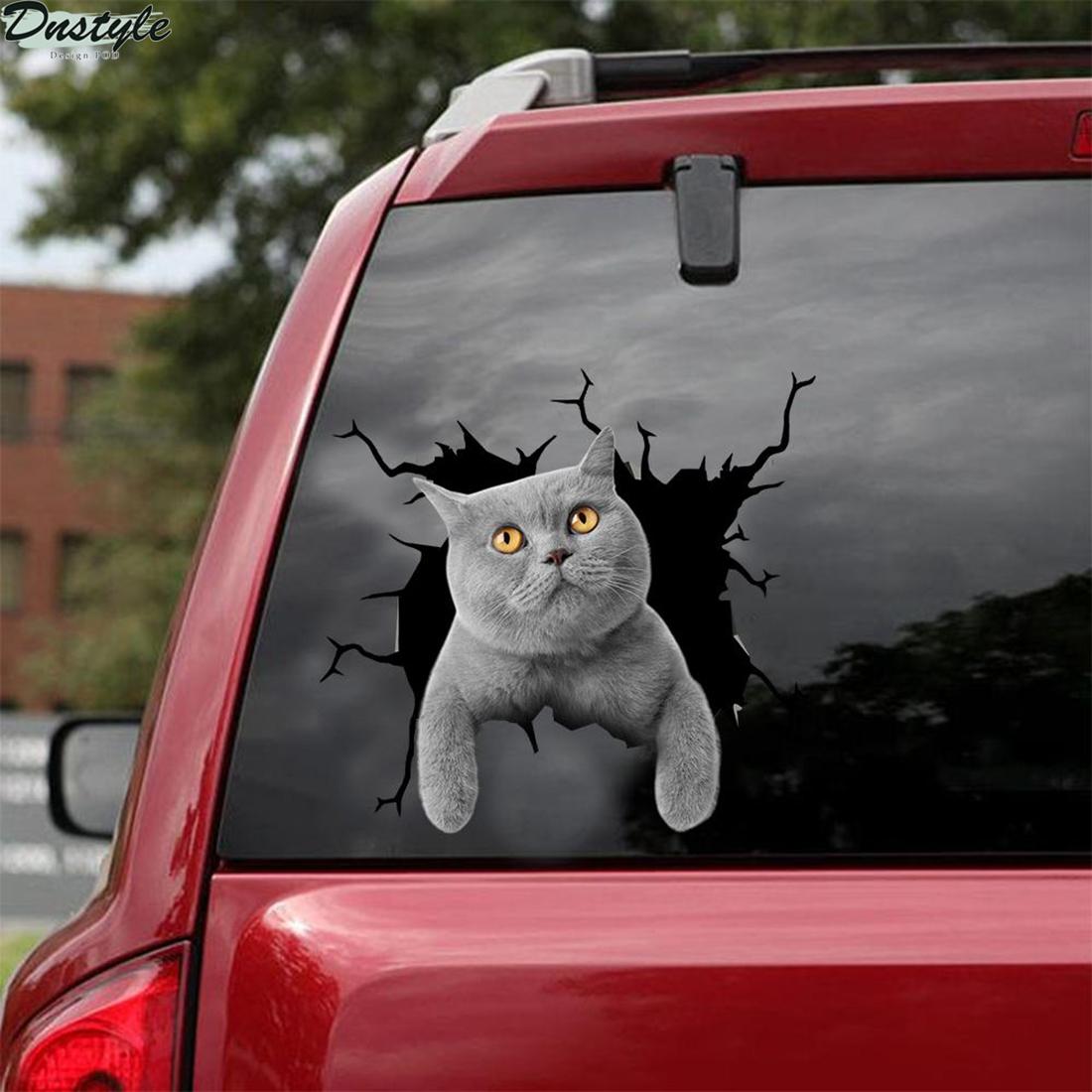 British shorthair cat crack car sticker cats lover 1