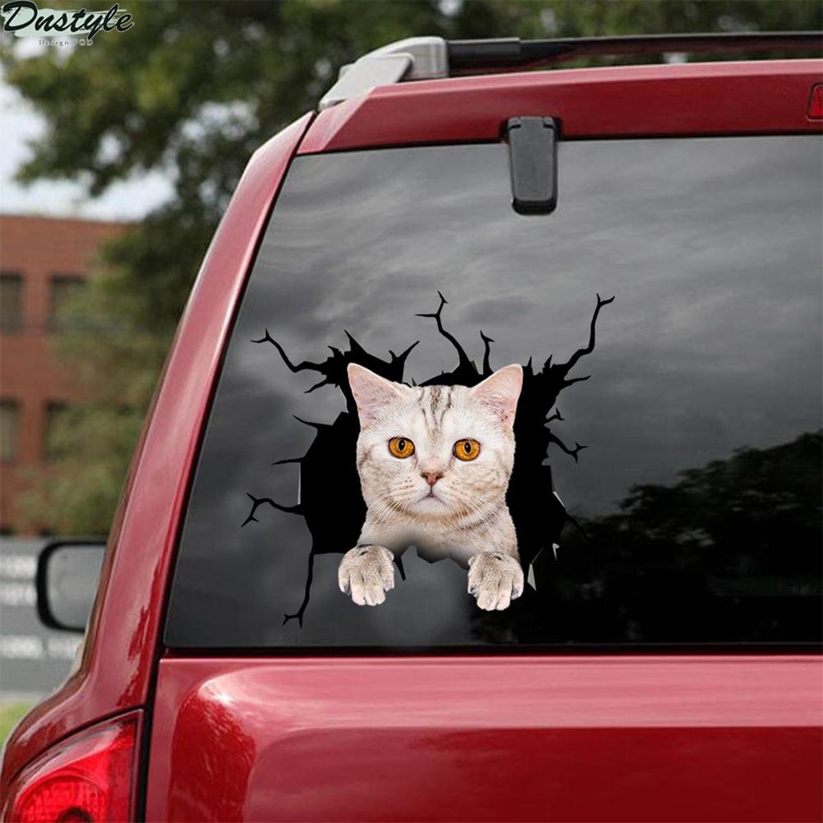 British shorthair cute cat crack car sticker cats lover 2