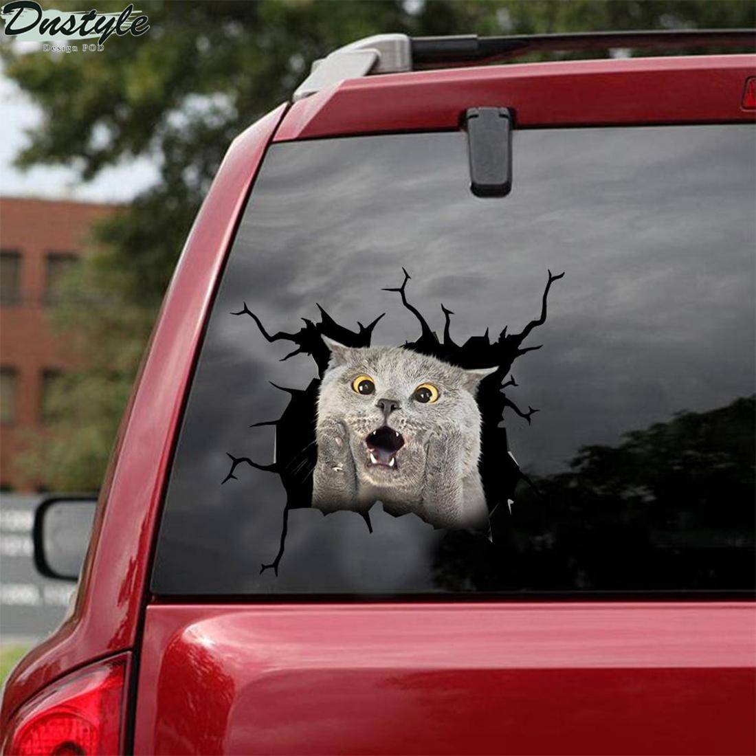 British shorthair screaming crack car decal sticker 1