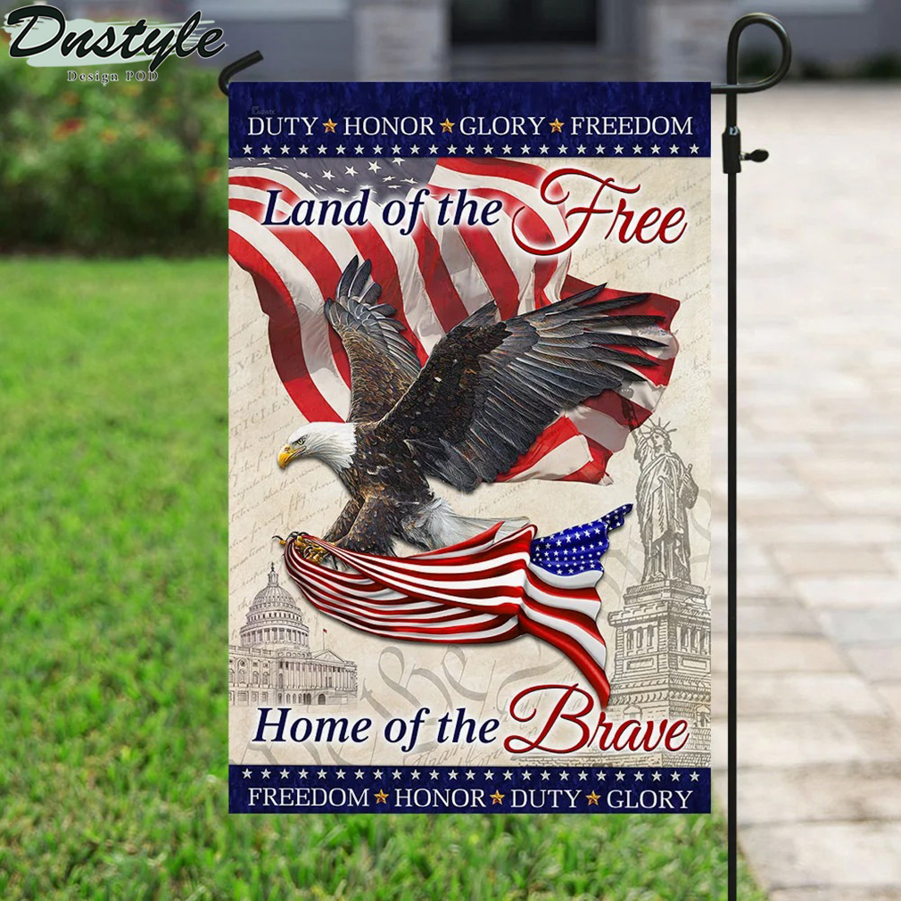 Eagle america flag land of the free home of the brave flag 2