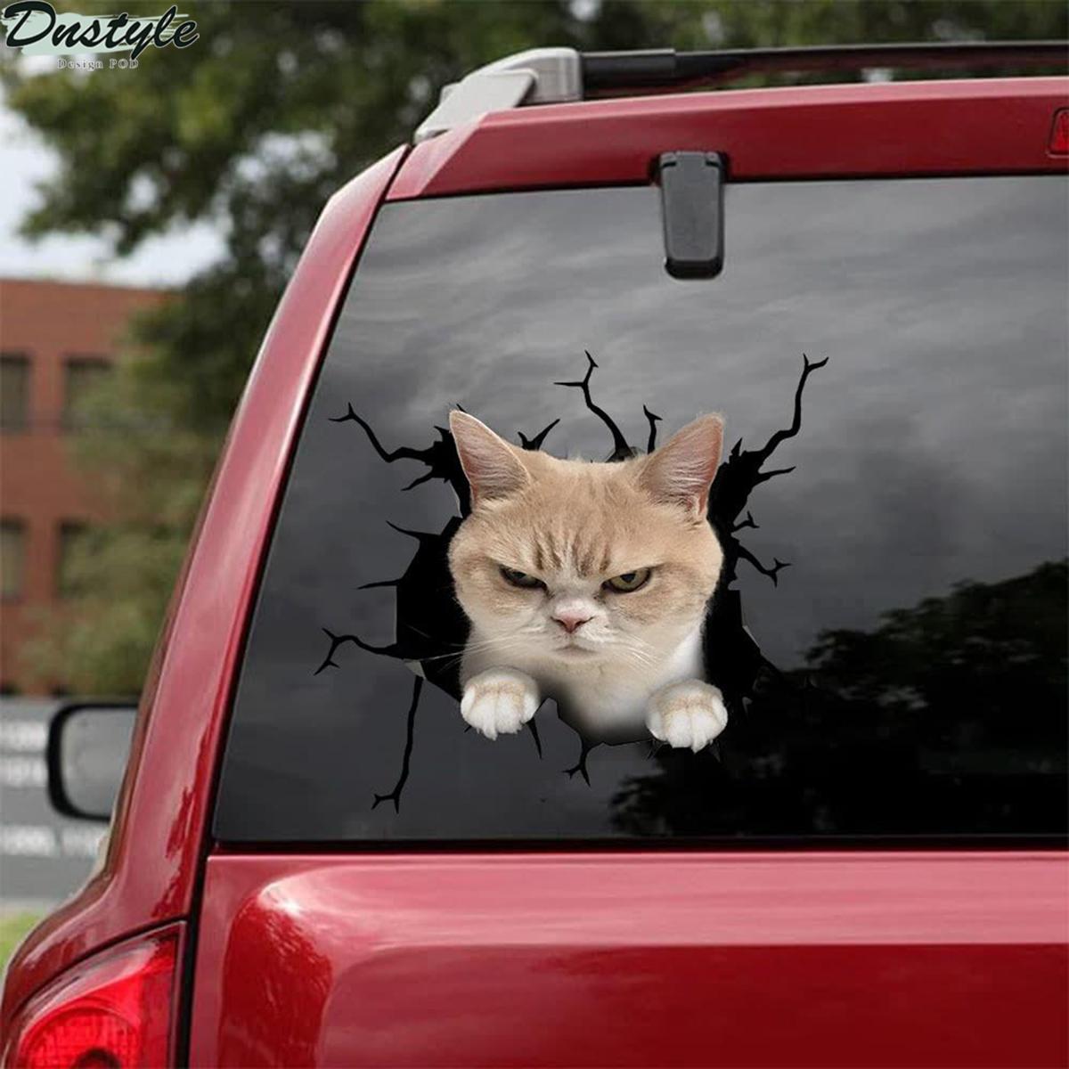 Grumpy cat car decal sticker 2