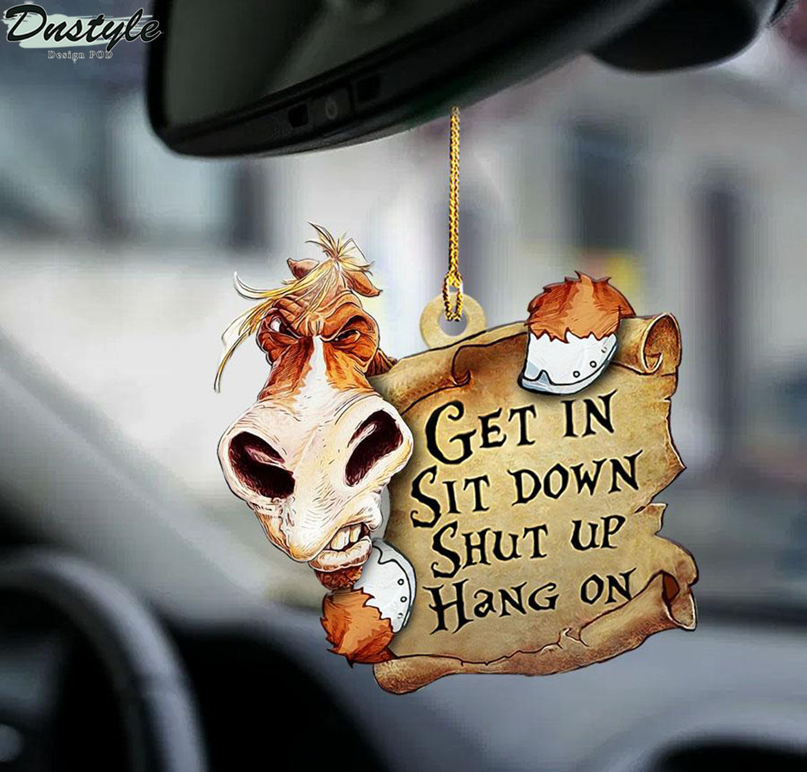 Horse get in sit down shut up hang on ornament 1