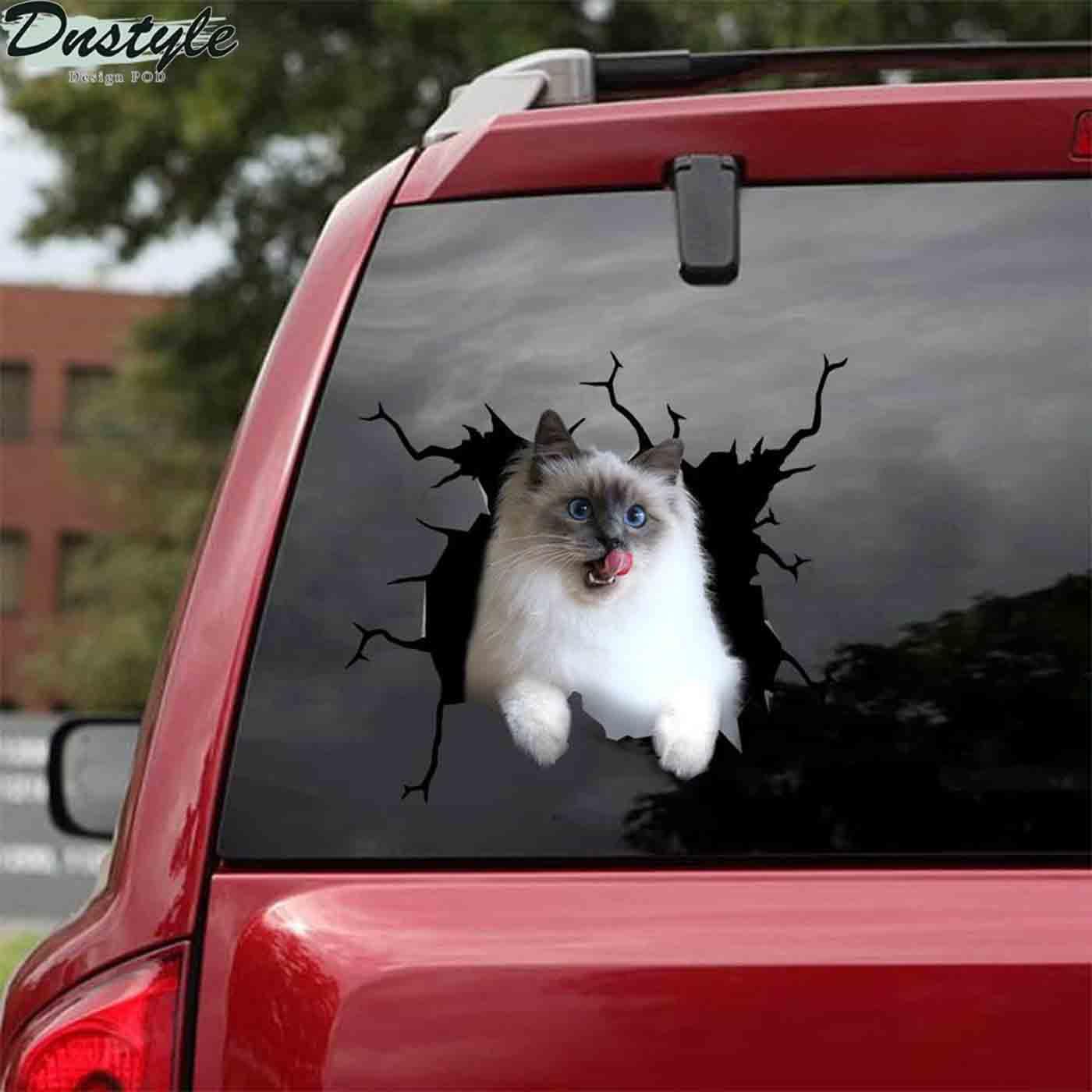 Ragdoll cat crack lick car decal sticker 2