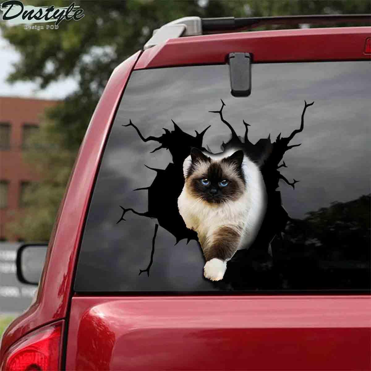 Ragdoll cat crack sticker cats lover 1