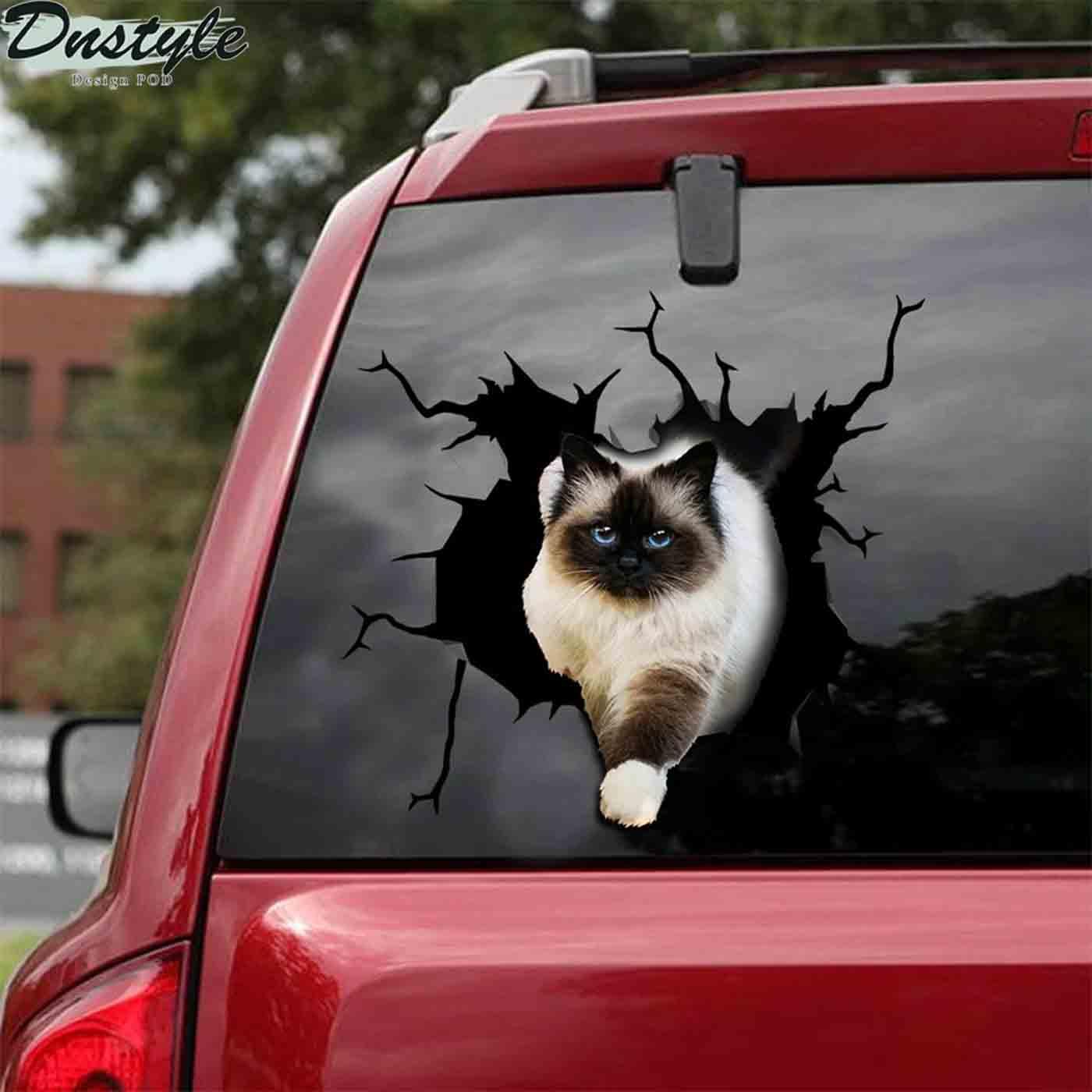 Ragdoll cat crack sticker cats lover 2
